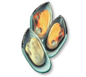 Greenshell™ mussels (Perna canaliculus)