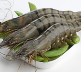 Prawn Whole Raw
