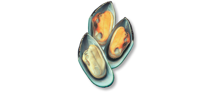 New Zealand Greenshell™ Mussels - Perna canaliculus